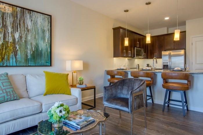 the-arbor-at-bridgemill-living-room-2