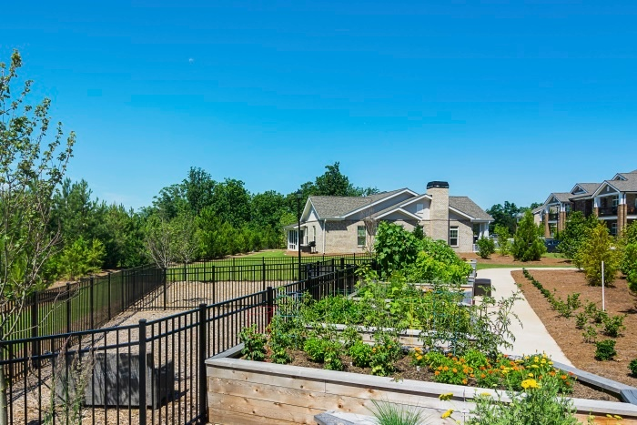 arbor-terrace-hamilton-mill-garden-dog-park