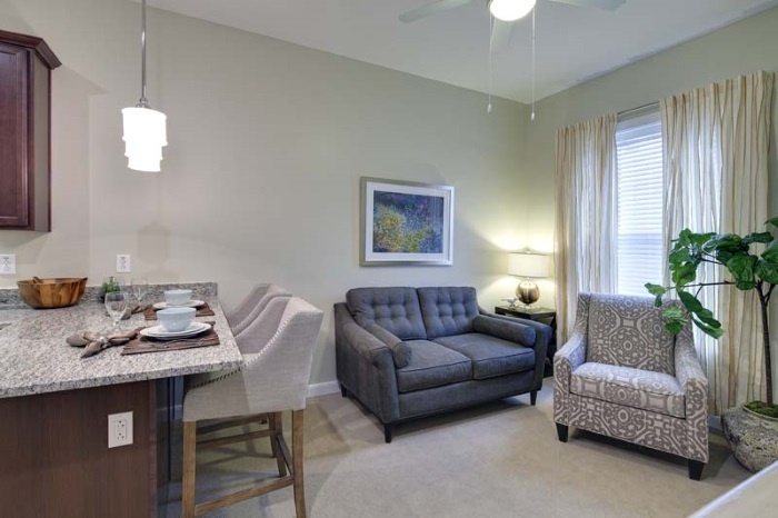 arbor-terrace-of-johns-creek-living-room